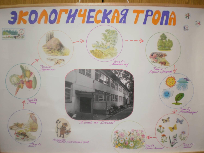 Схема экологической тропы в детском саду